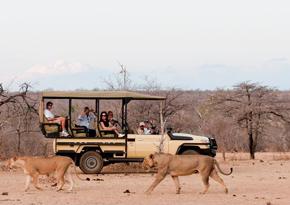 First safari holidays